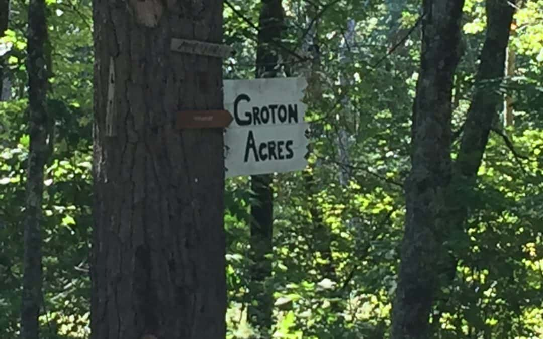 Groton Woods